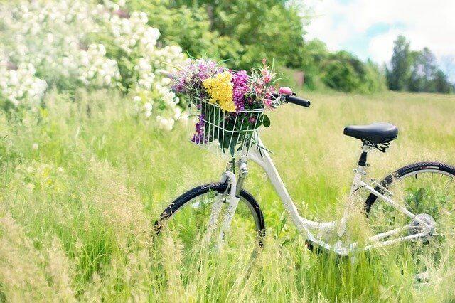 自転車グッズ